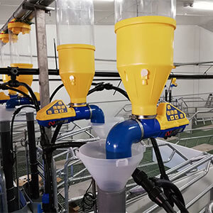 """A. Luengo: """"With the Dositronic we want to have the maximum control over the sow's nutrition."""""""
