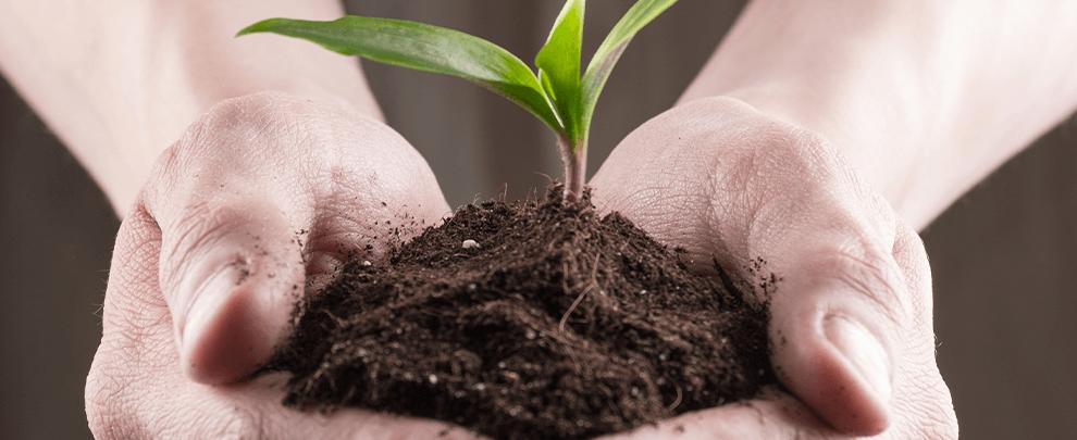 ¿Cómo luchar contra el cambio climático desde nuestras granjas?