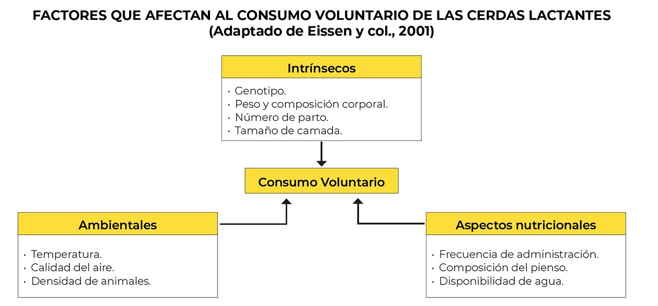 factores consumo voluntario