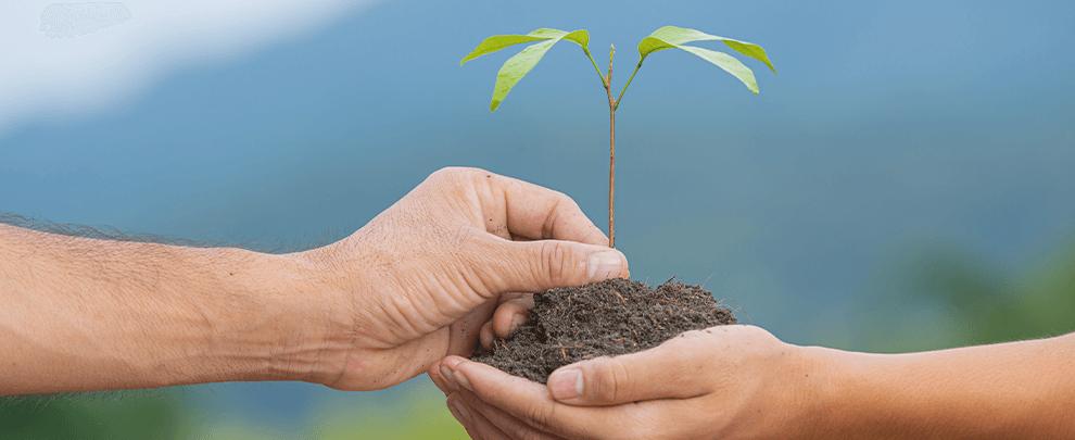 Objectiu: l'alimentació sostenible
