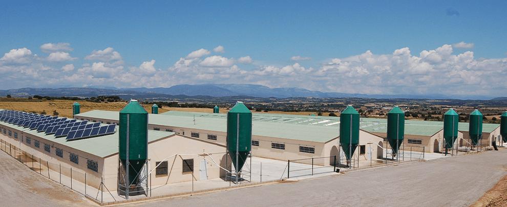 Dos años sin ampliaciones ni nuevas granjas en distintas zonas de Cataluña