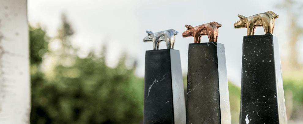 Primera gala on line de los premios porc d'or