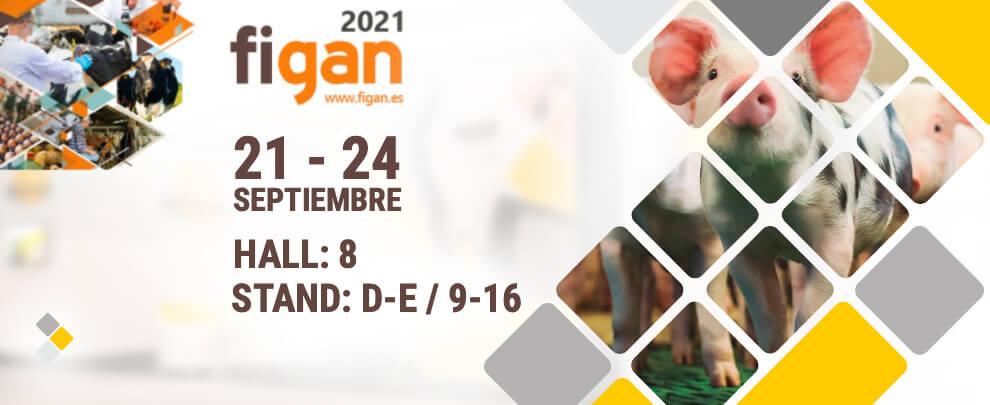 Rotecna принимает участие в выставке FIGAN 2021