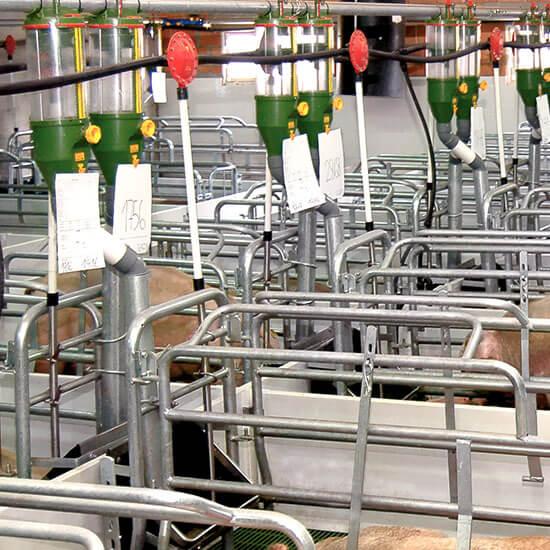 Dosificador instalado em granja